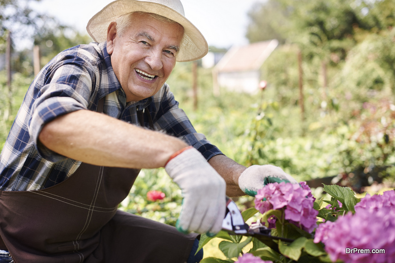 Care for Your Garden While You are Traveling