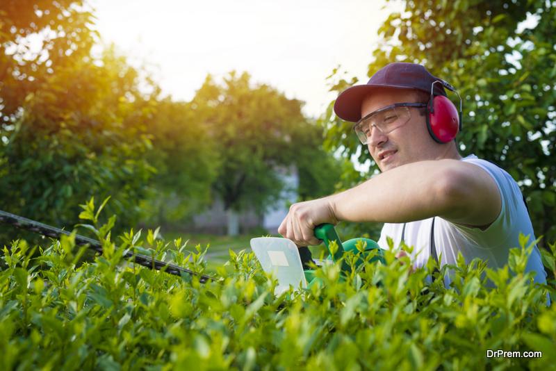 Hiring a Landscaping Company