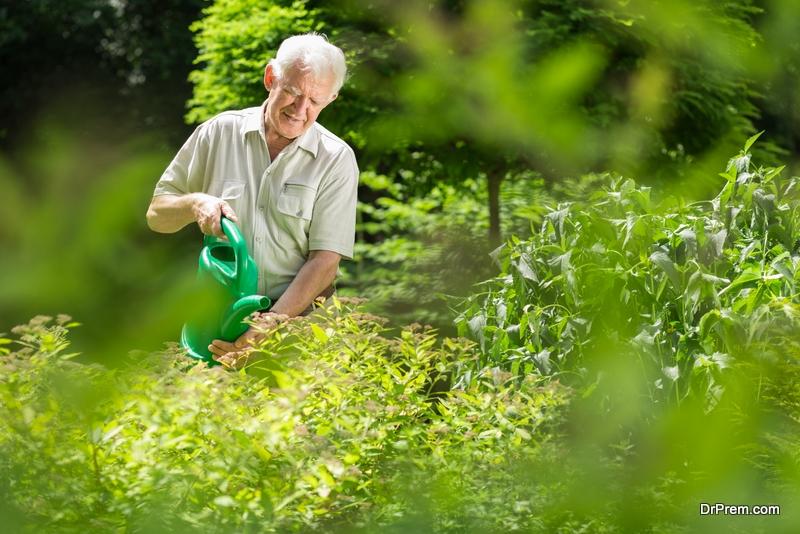 old-man-watering-garden