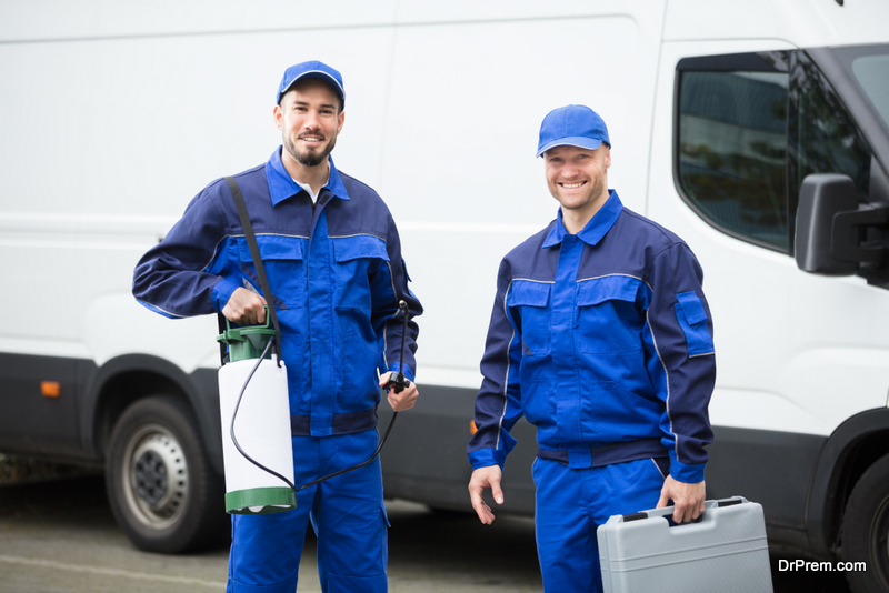 Hiring Professional Pest Control Services