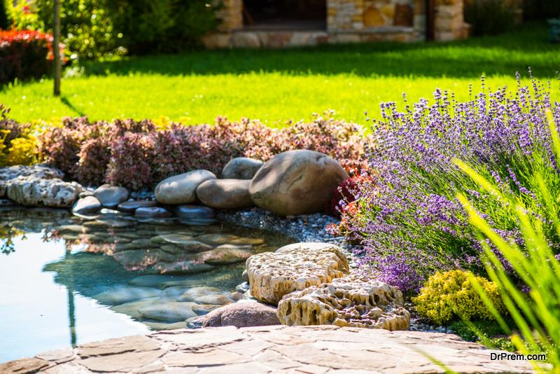 Pond-in-the-garden