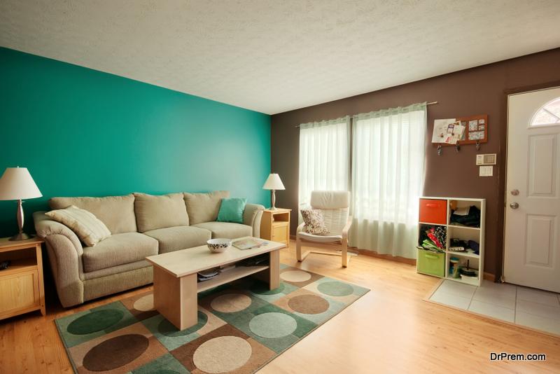 beautiful rug in living room