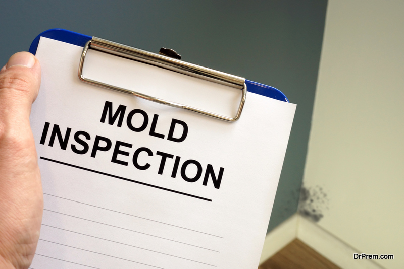 Documents about mold inspection