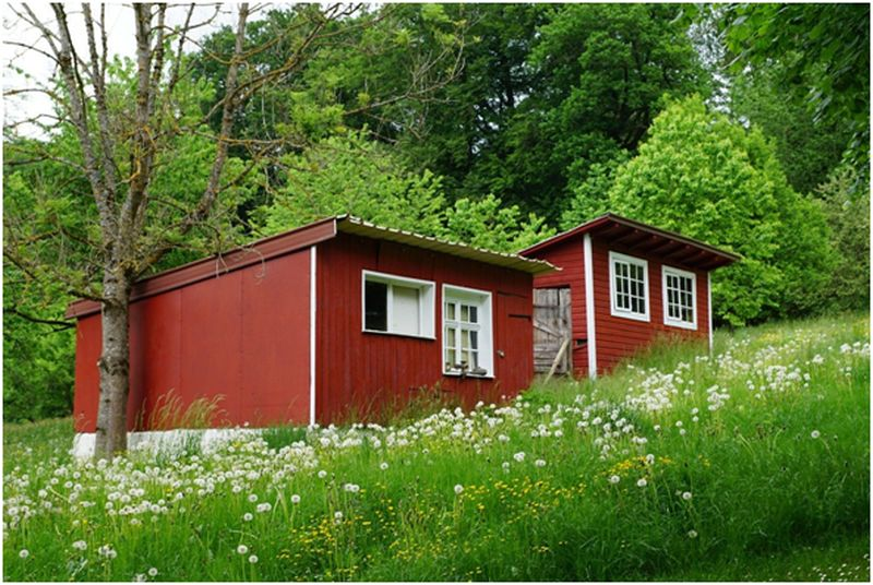 Sustainable Alternatives to Traditional Housing